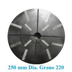 MUELA  GRANITO DIAMANTADA D. 250 GR. 220 DESBASTE